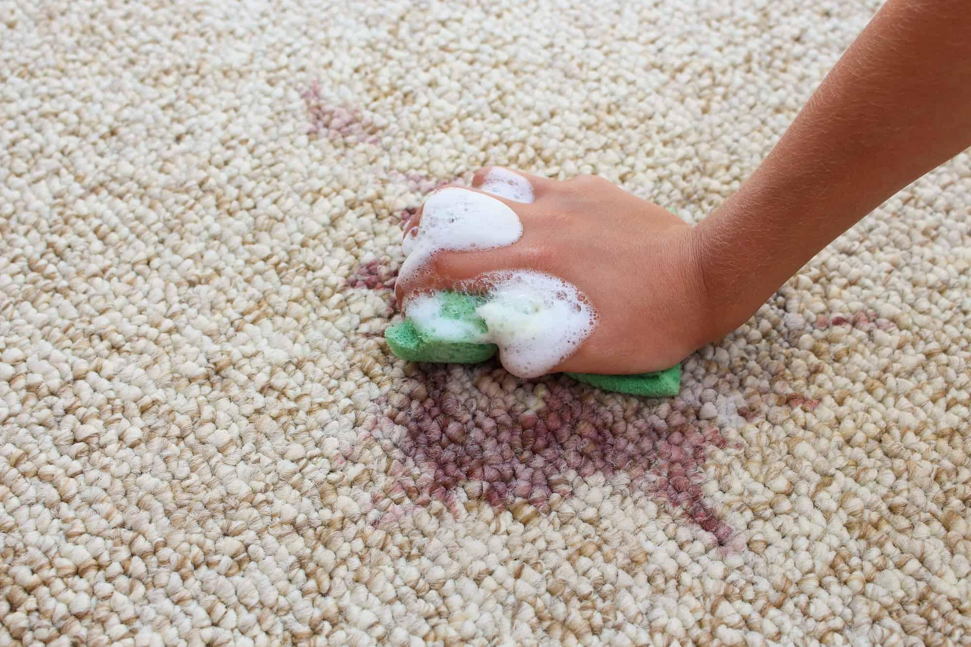 accrington carpet cleaners